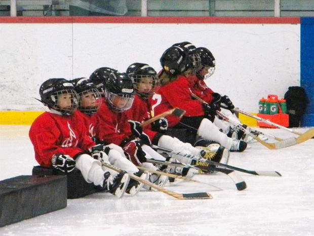Lehigh_Valley_Flames_Youth_Hockey_mini
