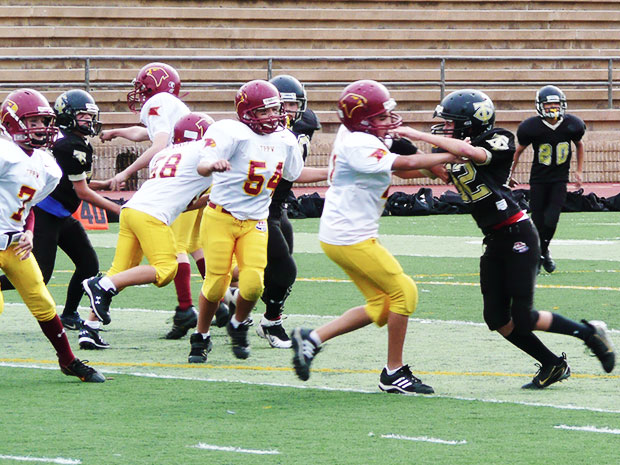 North-Raleigh-Bulldogs-Pop-Warner_620x465